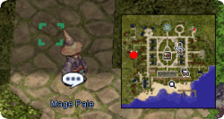 Mage-Paje.png